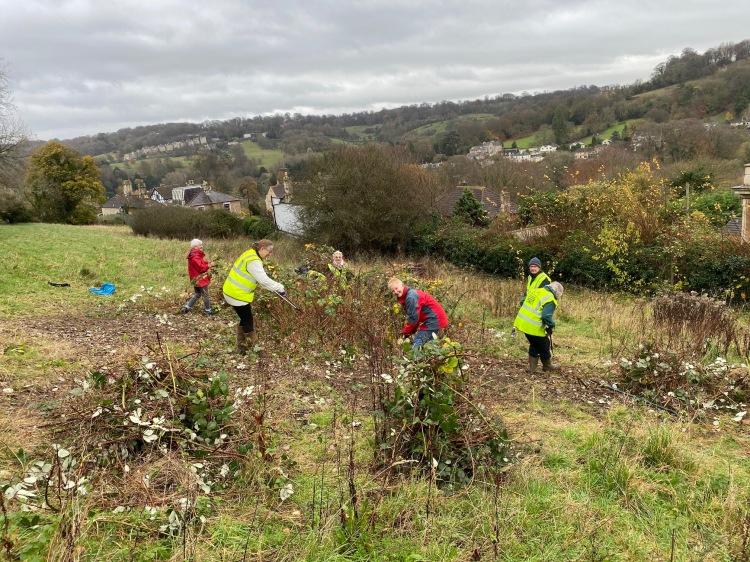 volunteers clearing brambles