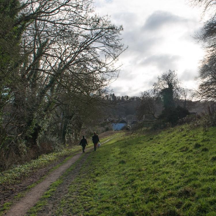 Footpath along the fields